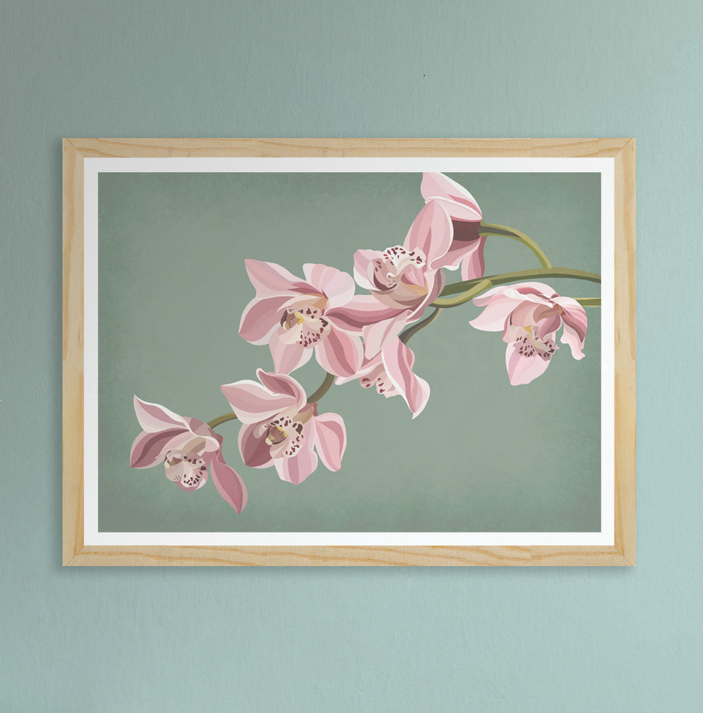 Orchid Fine Art Print on sage background