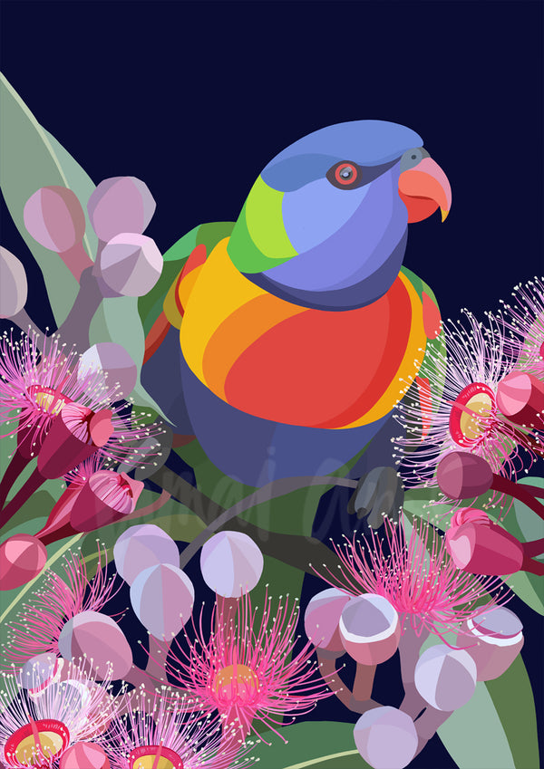 Rainbow Lorikeet Limited Edition Print