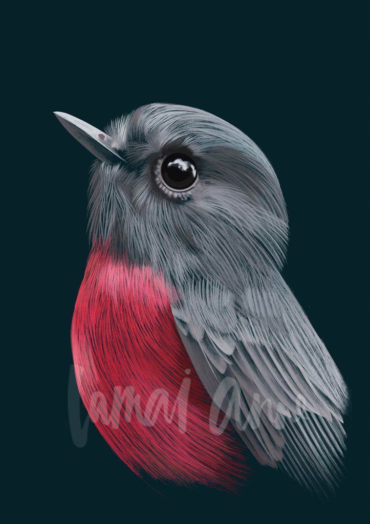 Rose Robin Limited Edition Print
