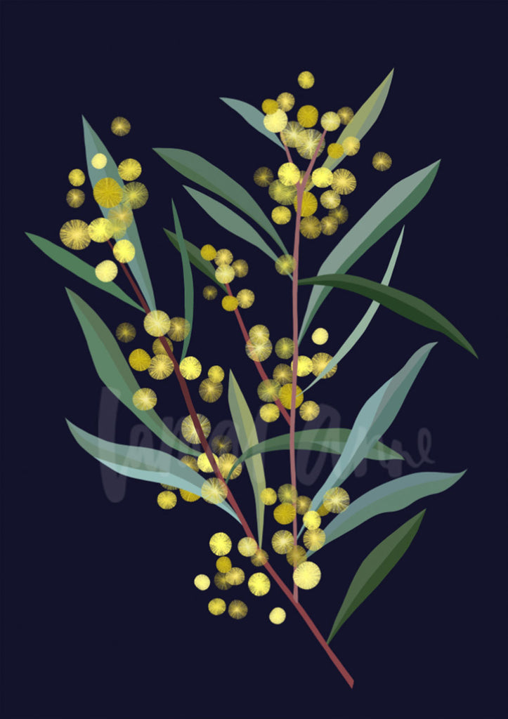 Wattle branch on Navy Limited Edition Print