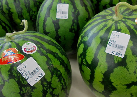 Japanese Watermelon Splitting Game スイカ割