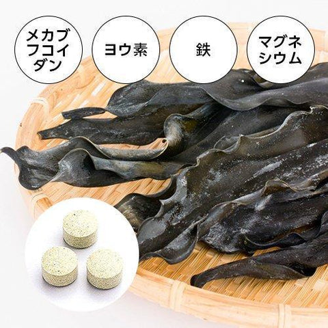 Image of Fine Japan Root Kelp Tablet (50 days) ファイン 根昆布エキス粒 50日分(1日10粒/500粒入) Life Tokyo Direct