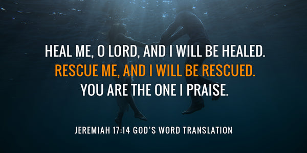 GOD'S WORD is a Fresh, Reliable, Relevant Bible Translation