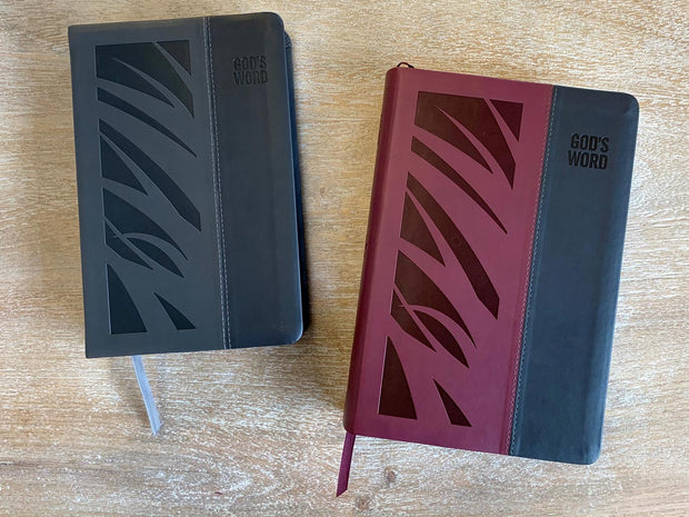 GOD'S WORD Wide-Margin Deluxe Bible Size Comparison