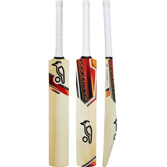 English Willow Cricket Bat in Detail and How to Maintain it