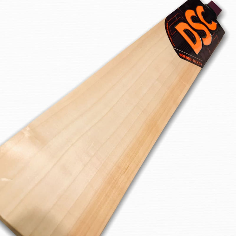 DSC Intense Ferocity Scooped Cricket Bat English Willow - Short Handle - BATS - MENS ENGLISH WILLOW