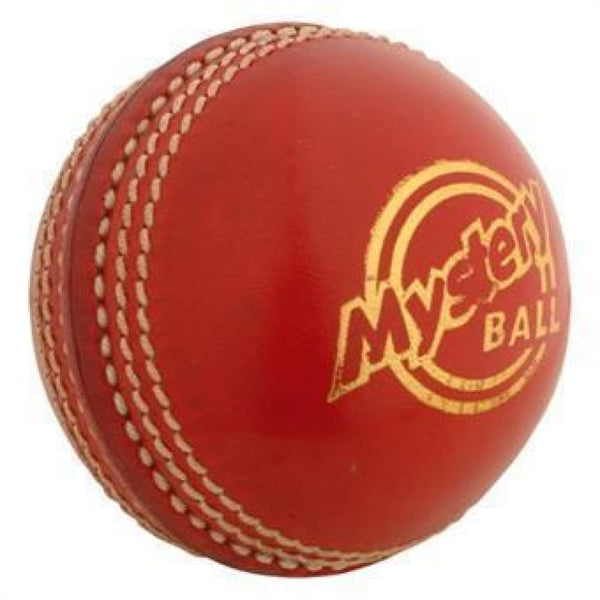 Mystery Cricket Ball Gray Nicolls - BALL - INDOOR