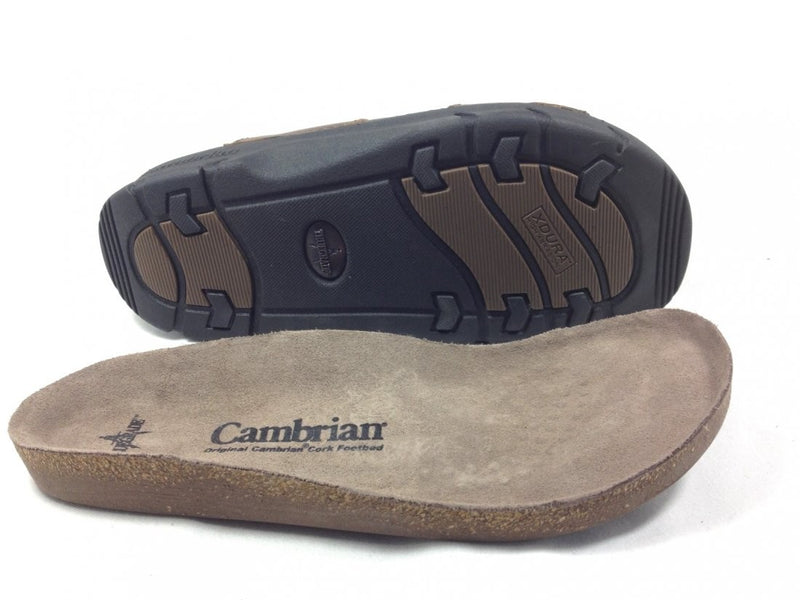 Cambrian Summit - Dark Brown