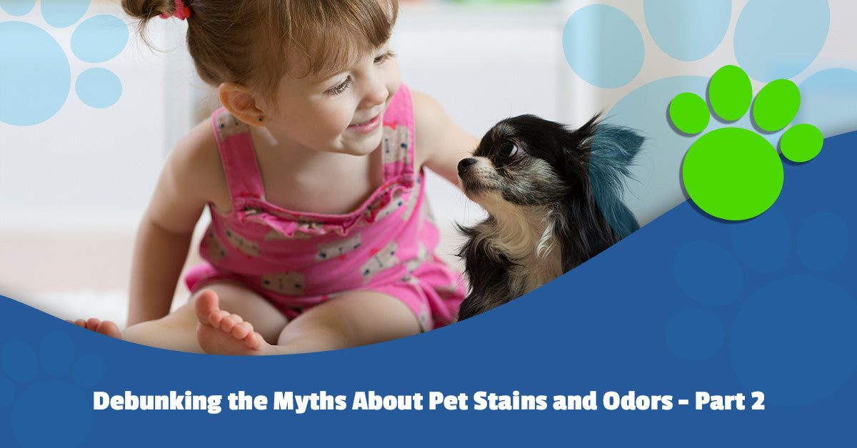 Debunking the Myths About Pet Stains and Odors Part 2