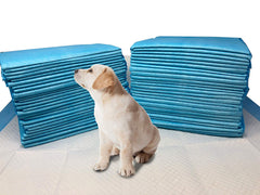 17 x 24 Small 3-Layer Value Doggy Training Puppy Pads- 100 Count