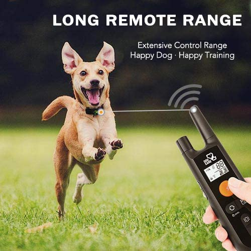 Dog Training Collar - Rechargeable Dog Shock Collar with Beep, Vibration and Shock Training Modes, Rainproof Training Collar, Long Remote Range, Adjustable Shock Levels Dog Training Set