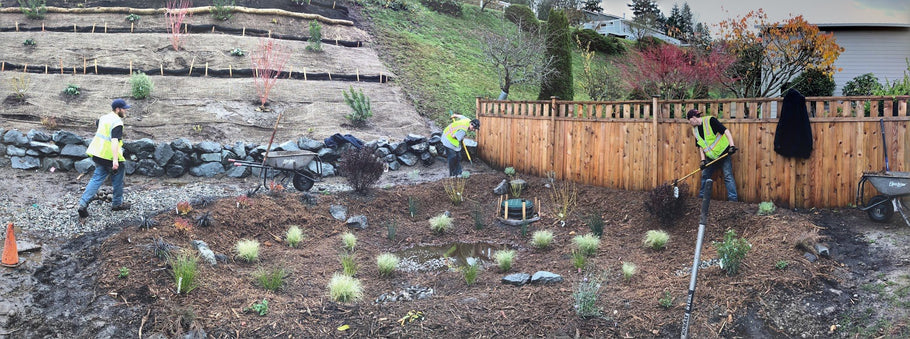 Open for Resolutions: The 12,000 Rain Garden Campaign
