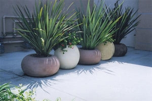Calypso Contemporary / Modern planters Concrete Creations