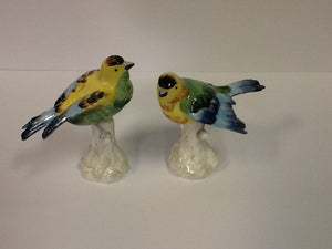 Italian porcelain hand painted birds pair