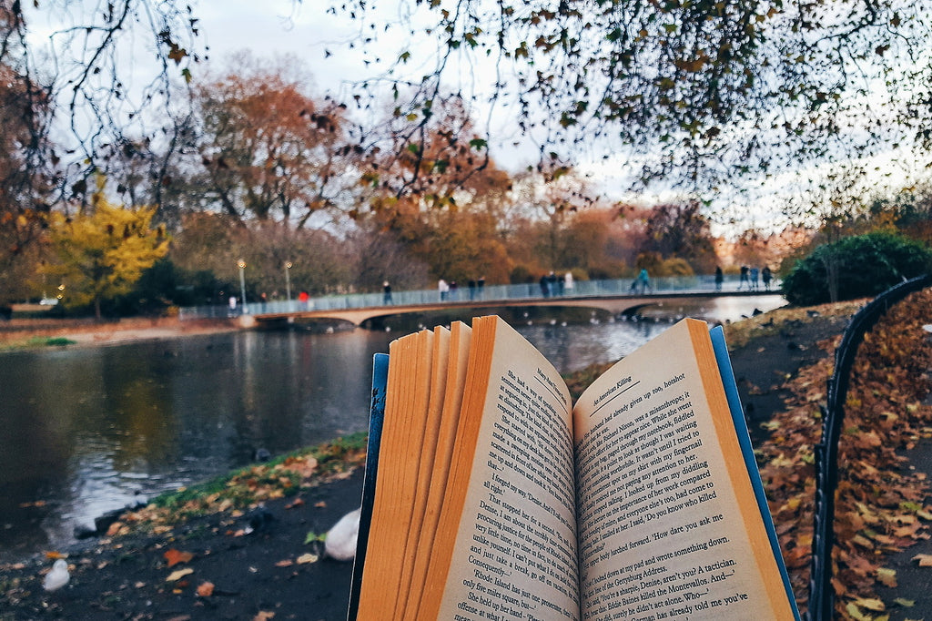 #london #uk #book #books #booklr #bookblr #booktumblr #bookblog #read #reads #eader #reading #readbooks #bibliophile #booktography #bookphoto #bookphotography #travel #travelblog #fall #autumn #season