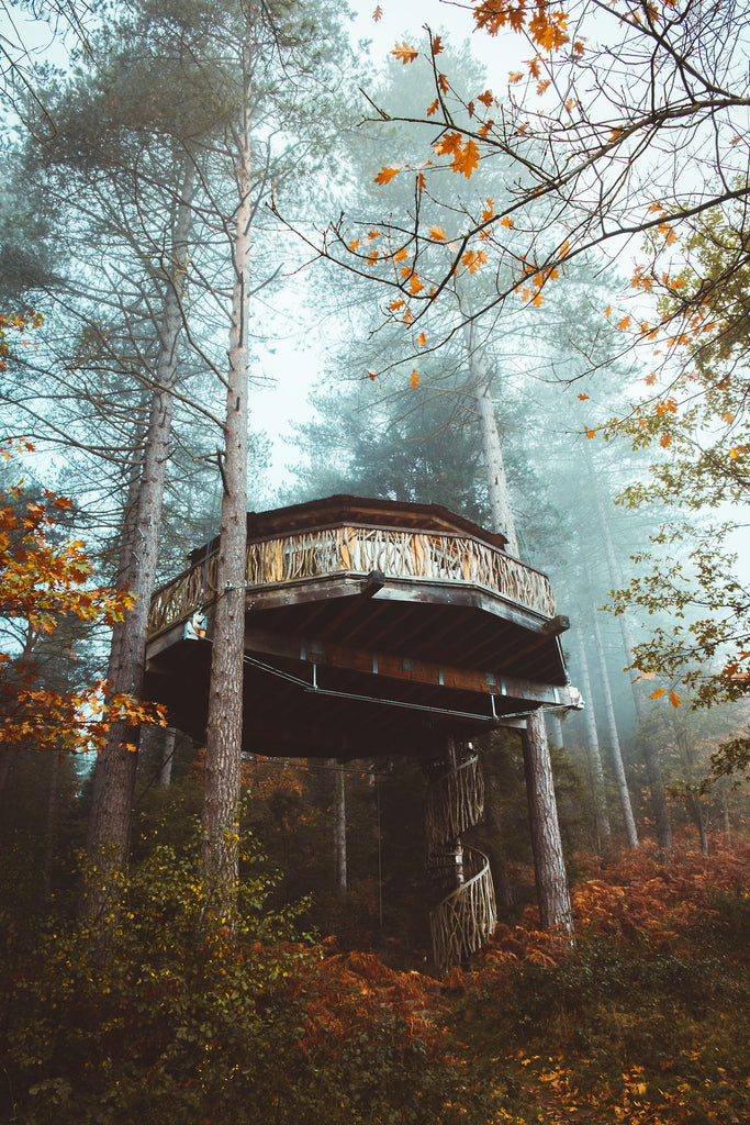 #landscape #wanderlust #treehouse #wander #explore #liveauthentic #nature #wood #mist #fog #autumn #fall #visualscollective #folk #travel #hotel #basquecountry