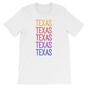 Texas Ombre - The Well Dressed Southern Mess