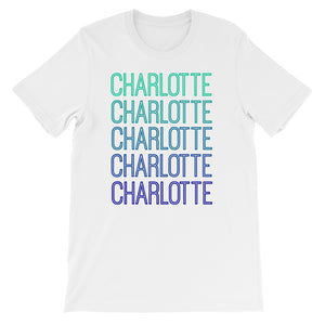 Charlotte Blue Ombre - The Well Dressed Southern Mess