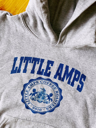 Youth Little Amps University Hoodie