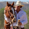 Image of Gareth Mare from Heartfelt Horsemanship