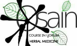 Mini Course in Osain Herbal Medicine