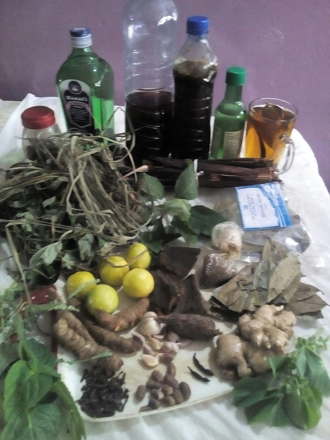 10 Herbal Medicines in Traditional African Medicine: 