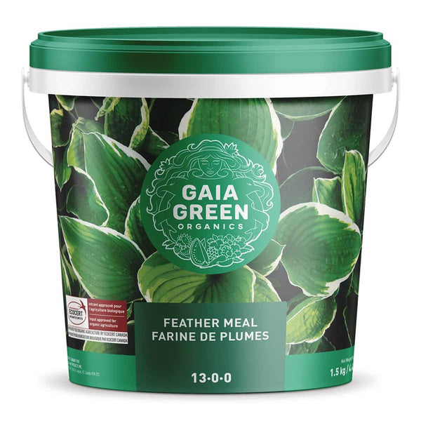 Gaia Green FEATHER MEAL 13-0-0 1.5KG
