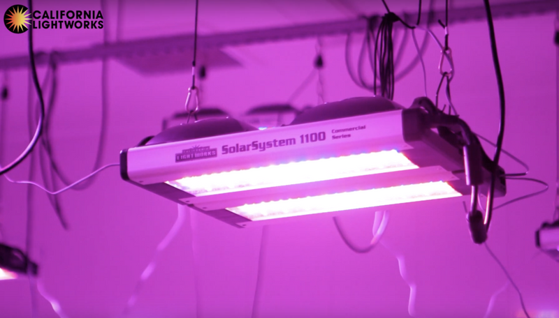 California Lightworks SolarSystem 1100 LED Grow Light