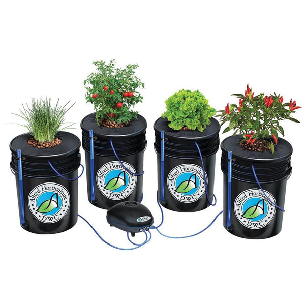 Alfred DWC (Deep Water Culture) 5 Gallon 4-Plant System Kit