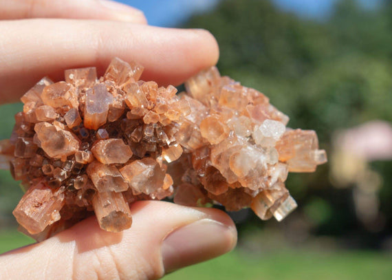 Your Guide to Aragonite and its Healing Properties