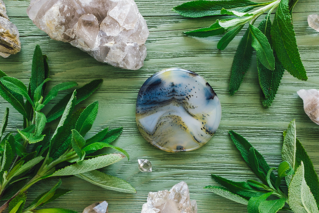 A polished dendritic agate stone surrounded by sage and other gemstones