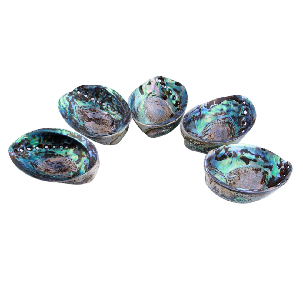 Abalone Shell of Peace and Harmony