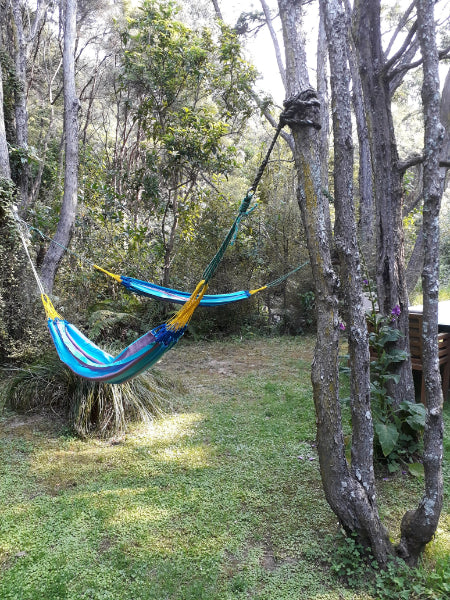 Colombian Single Wildberry Hammocks