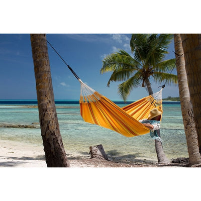 hammock in the pacific