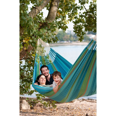 Blue hammock hanging from tree