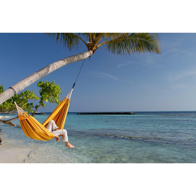 hammock hung from coconut tree