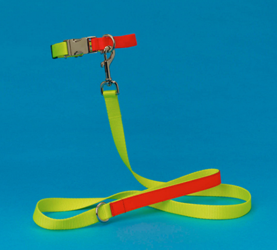Two-Tone Nylon Dog Leash