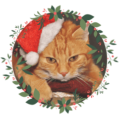 Click here for Cat Gift Guides!