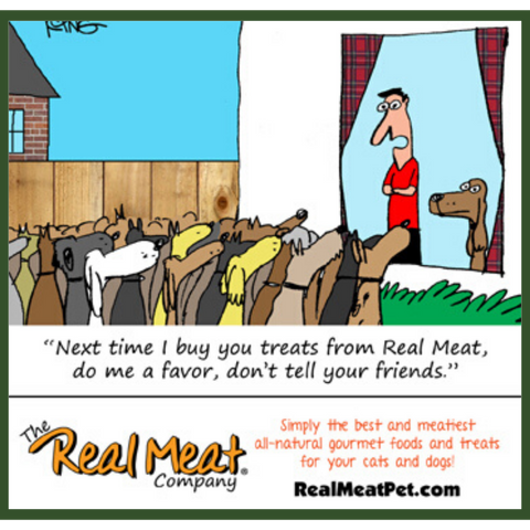 Comic: Next time I buy you Real Meat treats do me a favor: don't tell your friends!