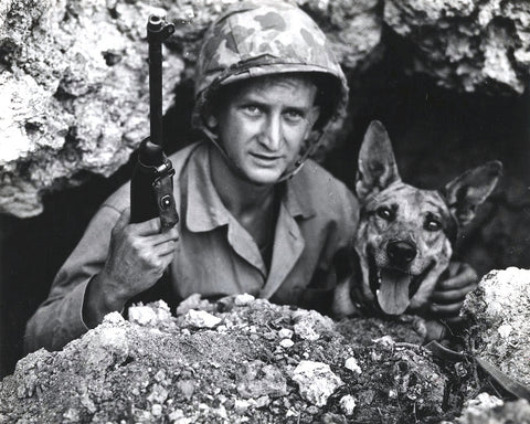 World War II Dog