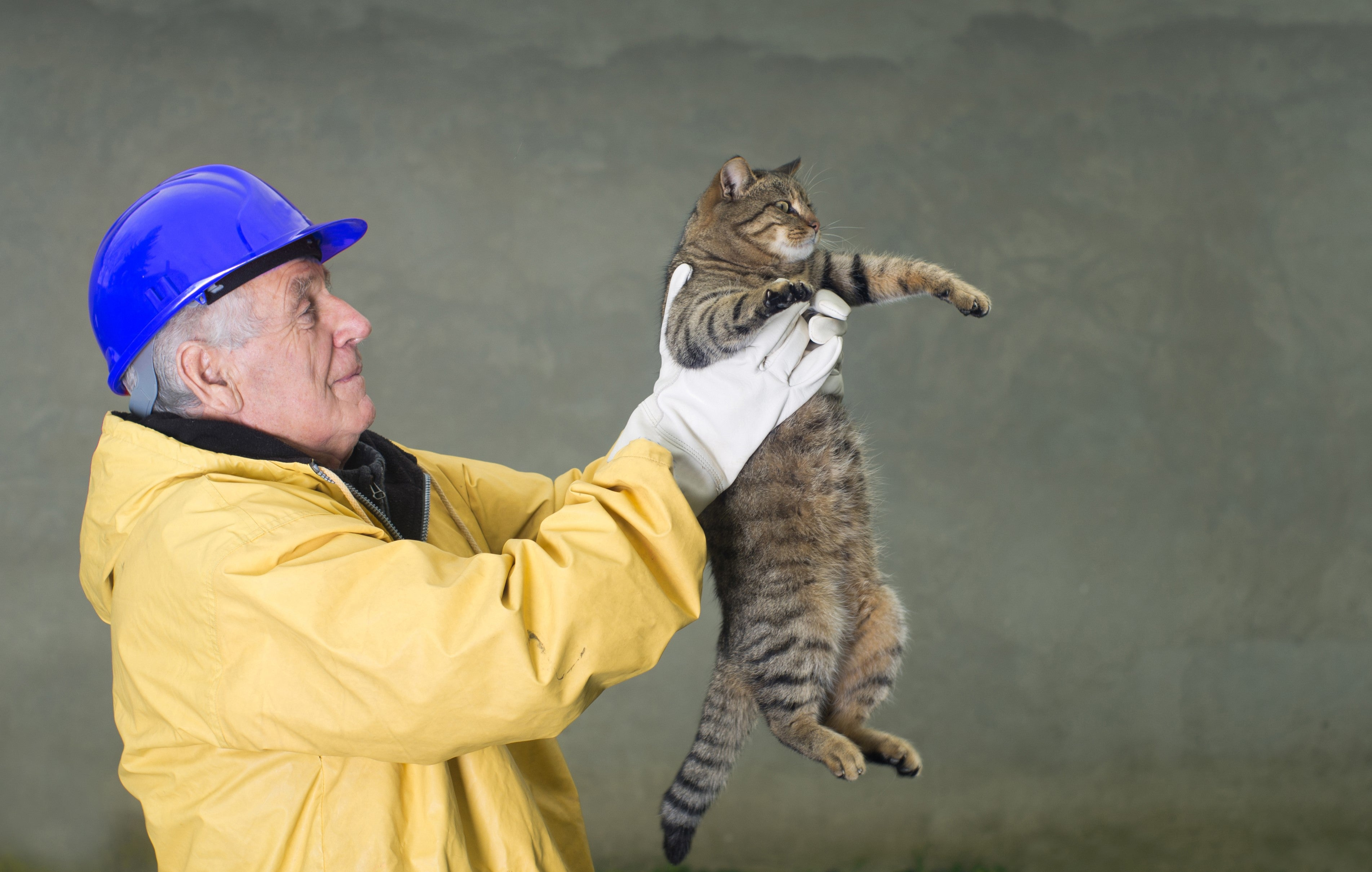 Man holding rescued cat.