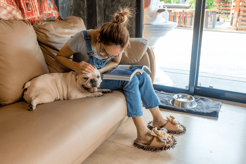 woman sitting on the couch with a french bulldog