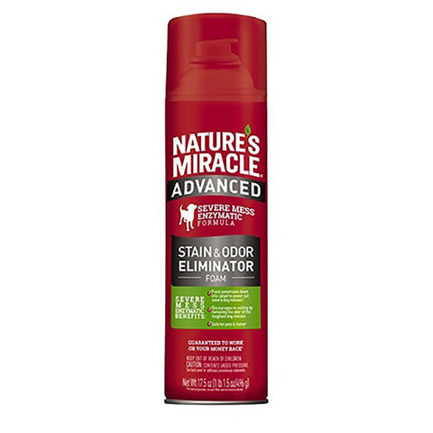 Advanced Stain & Odor Eliminator Foam