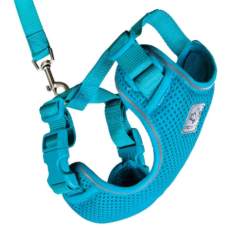 Adventure Kitty Harness & Leash Combo for Cats Teal