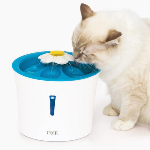 LED Blue Flower Cat Drinking Fountain