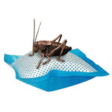 Cricket Reusable Polymer Water Pillows