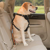 Direct To Seat Belt Tether for Dogs
