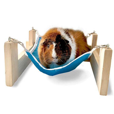 Hammock with Stand for Small Animals