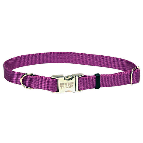 Adjustable Nylon Collar with Titan Metal Buckle Orchid