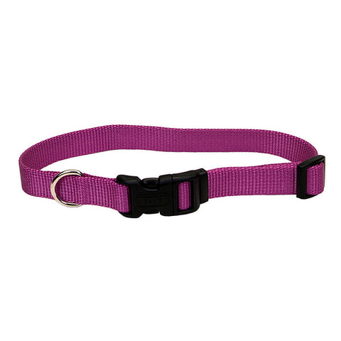 Adjustable Nylon Collar with Tuff Buckle Orchid